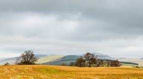 Glenclova Cairngorms Scozia Fotografie Stock
