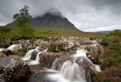 Glencoe-Hochländer Schottland Stockfotos