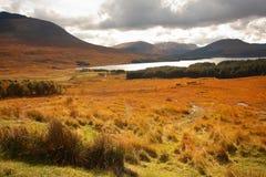Glencoe, Szkoccy średniogórza, Szkocja UK, obraz royalty free