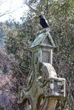 Glendalough stockbild