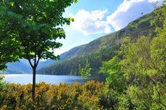 glendalough湖 免版税库存图片