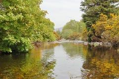 Glendalough black river Royalty Free Stock Image