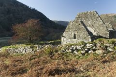 Hawthorn and Ruin in Glendalough Valley. Glendalough is a glacial valley in County Wicklow, Ireland, renowned for an Early Medieval monastic settlement founded royalty free stock images