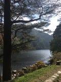 Glendalough sjö och skogsmark royaltyfria foton