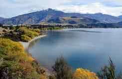Glendhu海湾在秋天, Otago新西兰 免版税库存照片