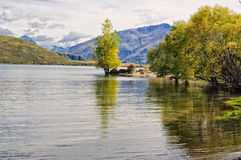 Glendhu Bay - Wanaka Stock Photography
