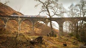 Glenfinnanviaduct, Januari 2015 Royalty-vrije Stock Afbeeldingen