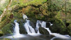 Glengarriff-Wasserfall lizenzfreie stockfotos
