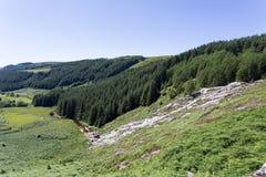 Glenmacnass vattenfall Arkivbild