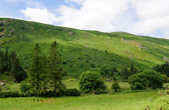 Glenmalure valley Stock Photography