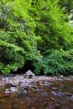 Glenmoylan River. Peaceful area of Glenmoylan River in Knockmealdown Mountains, Co.Waterford Ireland Stock Image
