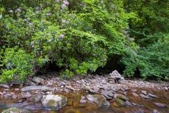 Glenmoylan River Stock Photo