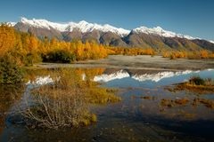 Glenn HWY, one of the most scenic routes in Alaska. Autumn colors reflection in river, Alaskan landscape scenery in early fall season royalty free stock images