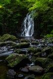 Glenoe siklawa, Północna - Ireland obraz stock