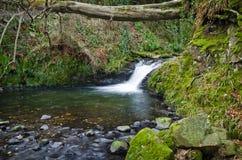 Glenoe Waterfall Stock Images