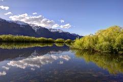 Glenorchy盐水湖,新西兰 库存照片