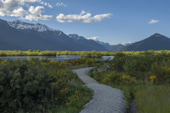 Glenorchy Lagoon, New Zealand Stock Photography
