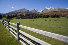 Glenorchy scenisk väg royaltyfri bild