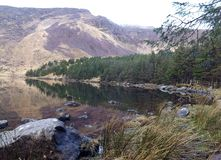 Glenteenassig scenic view. View of the lake, trees and mountain at Glenteenassig, on the Dingle Peninsula in Kerry, Ireland royalty free stock image