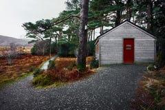 Glenveagh国家公园森林在Donegal爱尔兰 图库摄影