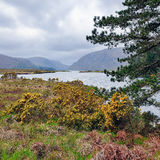 Glenveagh lake. County Dionegal. Glenveagh (from Irish Gleann Bheatha, meaning glen of the birches) is the second largest national park in Ireland. Blossom royalty free stock image