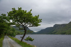 Glenveagh nationalpark, Republiken Irland, Churchill, Letterkenny Arkivbilder