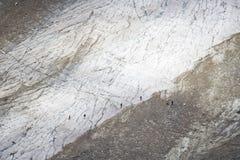 Gletscher Stockfotografie