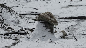 gletscher Eis ushroom Pamir Stockbild