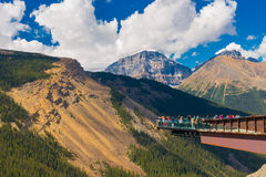 Gletscher-Glasboden Skywalk Jasper National Park Stockfotografie