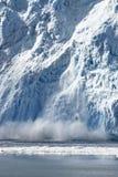 Gletscher-Kalben Stockfotografie
