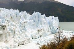 Gletscher Moreno in Terra Del Fuego Argentinien Lizenzfreies Stockbild
