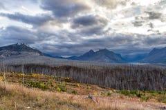 Gletscher NP, nach einem Feuer im Jahre 2015 Lizenzfreie Stockfotografie
