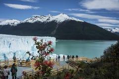 Gletscher Perito Moreno, EL Calafate, Argentinien lizenzfreies stockfoto