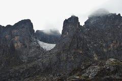 Gletscher von Rwenzori-Bergen lizenzfreie stockfotos