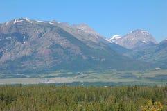 Gletschermountians und -wälder Stockfotos