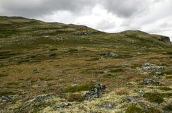 Gletsjer in de weiden van zuidelijk Noorwegen stock afbeeldingen