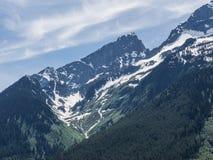 Gletsjer en sneeuw op Rocky Mountains Stock Foto's