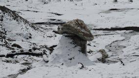 gletsjer Ijs ushroom Pamir Stock Afbeelding