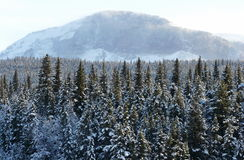 Gletsjer Nationaal Park Royalty-vrije Stock Afbeelding