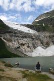 Gletsjer in Noorwegen Stock Afbeelding
