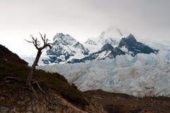 Gletsjer Perito Moreno Royalty-vrije Stock Afbeelding