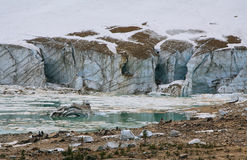 Gletsjer van Onderstel Edith Cavell stock afbeelding