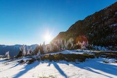 Gletsjerpark Stock Foto's
