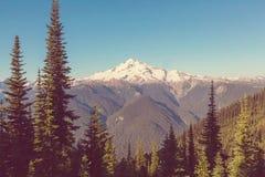 Gletsjerpiek Stock Foto