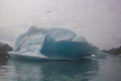 Gletsjers in het nationale park van kenaifyords bij beergletsjer bij het kayaking van reis Royalty-vrije Stock Foto's