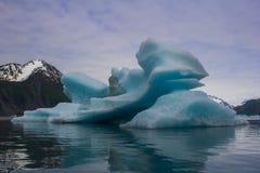Gletsjers in het nationale park van kenaifyords bij beergletsjer bij het kayaking van reis Royalty-vrije Stock Afbeelding