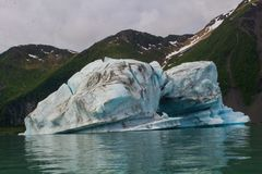 Gletsjers in het nationale park van kenaifyords bij beergletsjer bij het kayaking van reis Royalty-vrije Stock Afbeeldingen