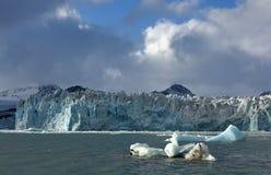 Gletsjers van Svalbard/Spitsbergen stock foto