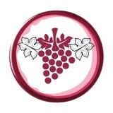 Gli acini d'uva hanno isolato l'icona Immagini Stock