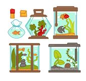 Gli acquari mettono con la flora e lapida l'illustrazione di vettore illustrazione di stock